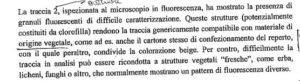 Le tracce di possibile contaminazione per i Ris
